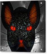October Cat  Acrylic Print