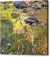 October Colors Reflected Acrylic Print
