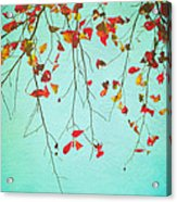 October Greetings Acrylic Print by Sharon Coty