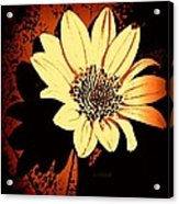 October Jewel Acrylic Print