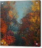 October Acrylic Print by Jutta Maria Pusl
