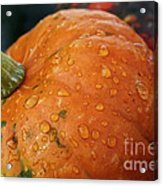 October Rain Drops Acrylic Print