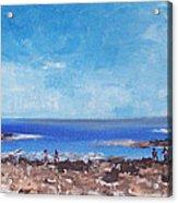 Odiorne Beach Park Nh Acrylic Print by Michel Croteau