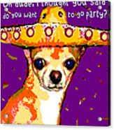 Party Chihuahua Acrylic Print