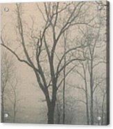 Ohio Winter Solitude Acrylic Print
