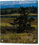 Ohop Valley Rainier Acrylic Print