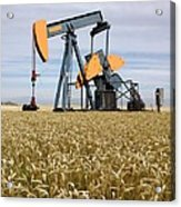 Oil Pump In A Wheat Field Acrylic Print