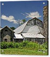 Old Dairy Barn 2 Acrylic Print
