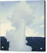 Old Faithful Geyser Erupts About Once Acrylic Print