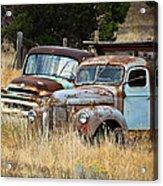 Old Farm Trucks Acrylic Print
