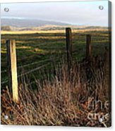 Old Fence And Landscape At Point Reyes California . 7d9968 Acrylic Print