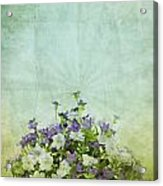 Old Grunge Paper Flowers Pattern Acrylic Print