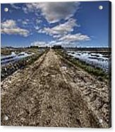 Old Highway Acrylic Print by Gabriel Calahorra