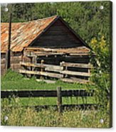 Old Hog Shed Acrylic Print