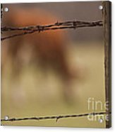 Old Post Fence Acrylic Print