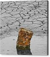Old Rusted Barrel Abstract Acrylic Print