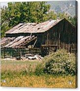 Old Saisia Barn In Spring Acrylic Print