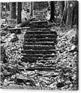 Old Stone Steps Acrylic Print
