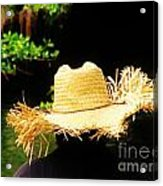 Old Straw Hat Acrylic Print