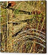 Old Weathered Gate Acrylic Print