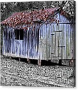Old Weathered Shed Acrylic Print