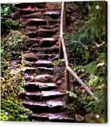 Old Wet Stone Steps Acrylic Print
