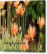 Old Zen Proverb Acrylic Print
