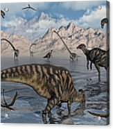 Omeisaurus And Parasaurolphus Dinosaurs Acrylic Print
