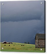 Ominous Clouds Gather Over Horses Acrylic Print