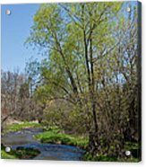 On The Banks Of Spring Acrylic Print