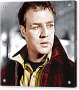 On The Waterfront, Marlon Brando, 1954 Acrylic Print by Everett