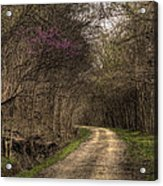 On This Trail Acrylic Print