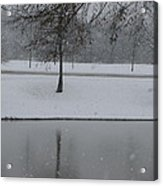 On This Winter Day Acrylic Print
