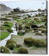 Ona Beach 2 Acrylic Print