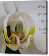 Once Imagined Acrylic Print