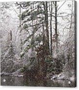 One Alabama Christmas Acrylic Print