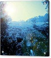 One Blue Morning Acrylic Print