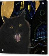 One Dark Halloween Night Acrylic Print