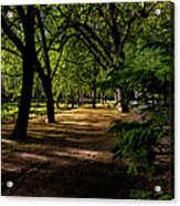 One Day In The City Park Acrylic Print