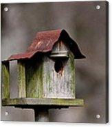 One Room Shack - Bird House Acrylic Print