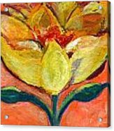 One Yellow Flower And Pinky Peach Behind Acrylic Print