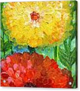 One Yellow One Red And Orange Flower Shines Acrylic Print