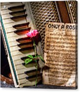Only A Rose II Acrylic Print