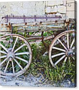 Only One Previous Owner Acrylic Print