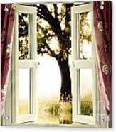 Open Window To Tree Acrylic Print