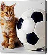 Orange And White Kitten With Soccor Ball Acrylic Print