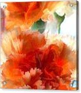 Orange Carnations Acrylic Print