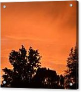 Orange Sky Acrylic Print by Naomi Berhane