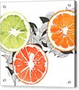 Orange Acrylic Print by Viki Vehnovsky