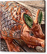 Orangeadillo Acrylic Print by Ken Williams